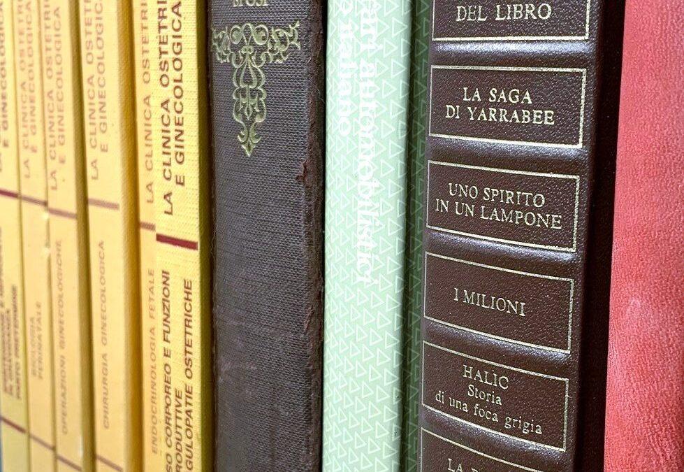 Bibliothéque #104  ( Détail )